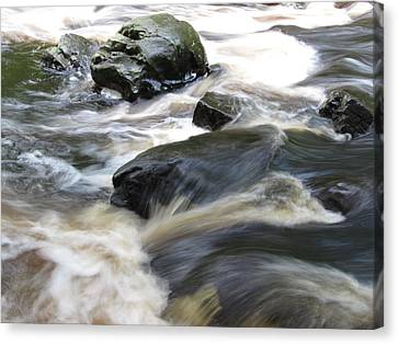 Drowning Images Canvas Print by Richard Reeve
