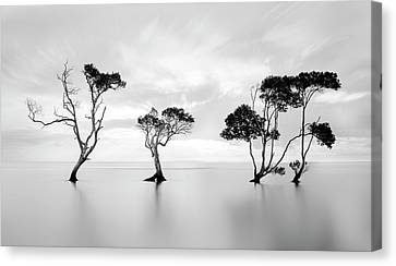 Silk Water Canvas Print - Drowning Not Waving by Steven Fudge