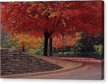 Canvas Print - Druid Park-baltimore -- Maryland II by Harold E McCray