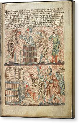 Booze Canvas Print - Drunkeness Of Noah by British Library