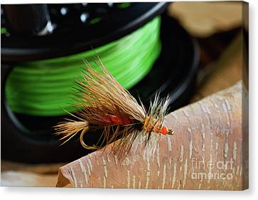 Dry Fly - D003399b Canvas Print by Daniel Dempster