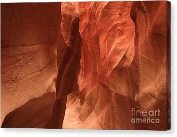 Dry Fork Glow Canvas Print by Adam Jewell
