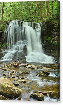 Dry Run Falls #1 Canvas Print