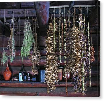 Drying Herbs And Vegetables In Williamsburg Canvas Print by Dave Mills