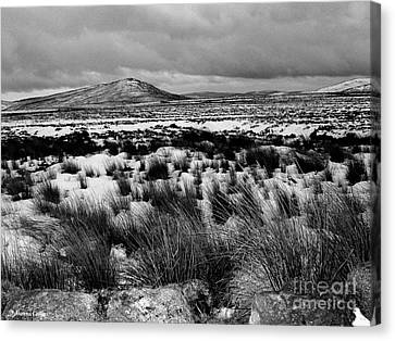 Dublin Mountains In Winter Ireland Canvas Print by Jo Collins