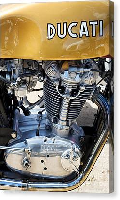 Tim Canvas Print - Ducati Desmo Mk 3 450cc by Tim Gainey