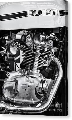 Ducati Desmo Canvas Print by Tim Gainey