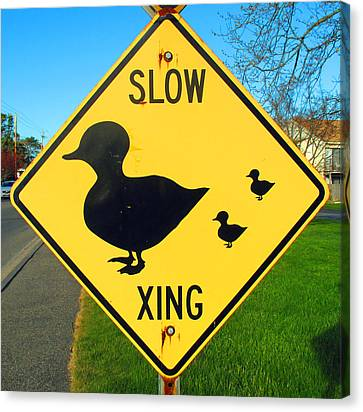 Duck Crossing Sign Canvas Print by Barbara McDevitt