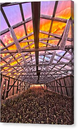 Duck Farm Skeleton Skylight Canvas Print