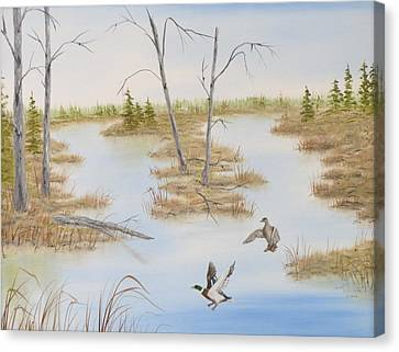 Duck Marsh Canvas Print by Janet Hufnagle