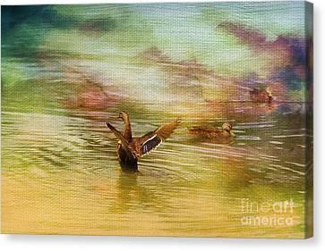 Duck Paradise Canvas Print by Deborah Benoit