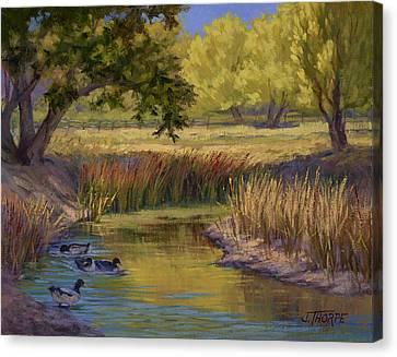 Duck Pond Canvas Print by Jane Thorpe