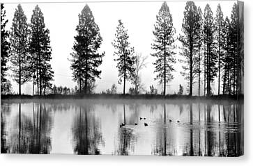Canvas Print featuring the photograph Duck Weather by Julia Hassett