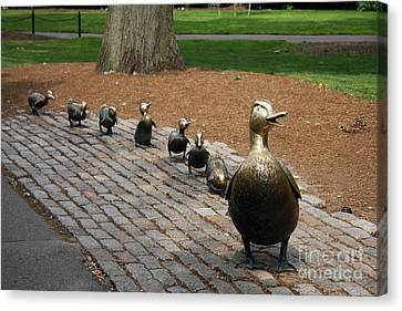 Ducklings Canvas Print by Christiane Schulze Art And Photography