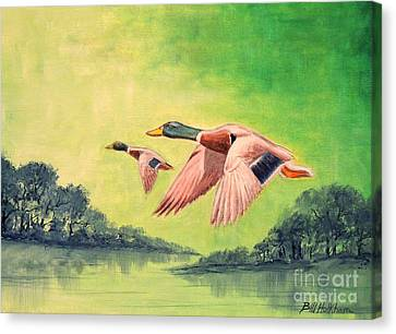 Ducks In Flight Canvas Print by Bill Holkham