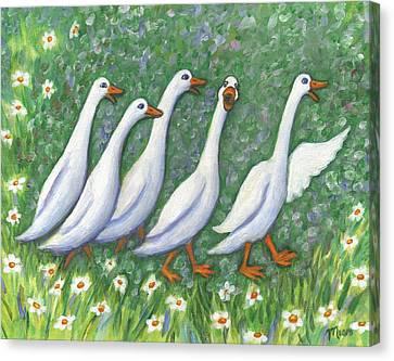 Ducks Laughing Canvas Print