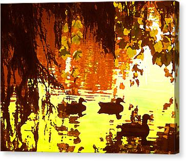 Abstract Water Fall Canvas Print - Ducks On Red Lake by Amy Vangsgard