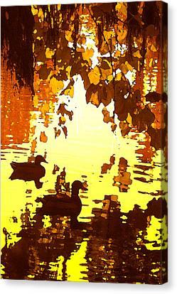 Ducks On Red Lake B Canvas Print by Amy Vangsgard