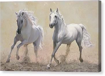 Due Cavalli Canvas Print by Danka Weitzen