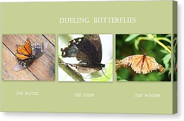 Canvas Print featuring the photograph Dueling Butterflies Collage by Margie Avellino