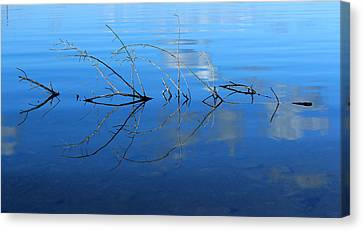 Duet Of The Branch And The Lake Canvas Print by Rima Biswas