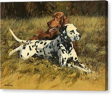 Duke N Dooley Canvas Print by Don  Langeneckert