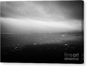 dull overcast misty day in Fournier Bay on Anvers Island Antarctica Canvas Print by Joe Fox