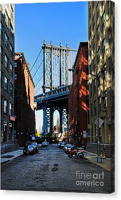 Dumbo 1 Canvas Print by Bob Stone