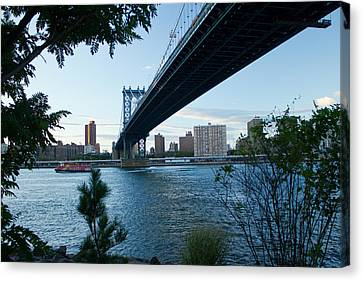 Canvas Print featuring the photograph Dumbo One by Jose Oquendo