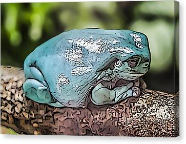 00014 Dumpy Tree Frog Canvas Print by Photographic Art by Russel Ray Photos