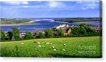 Dundrum Bay In County Down Ireland Canvas Print by Nina Ficur Feenan