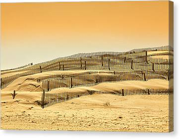Dune Fence Canvas Print by Jay Wickens