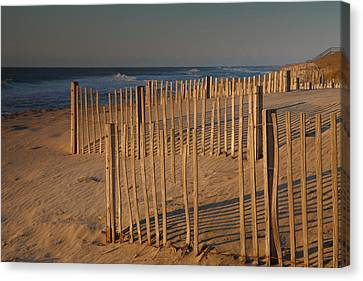 Dune Fences At First Light I Canvas Print by Steven Ainsworth