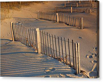 Dune Fences Early Morning Canvas Print by Steven Ainsworth
