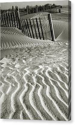 Dune Patterns II Canvas Print by Steven Ainsworth