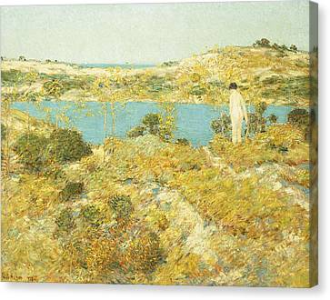 Dune Pool Canvas Print by Childe Hassam