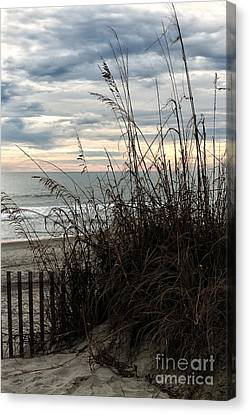 Dune View Canvas Print by John Rizzuto