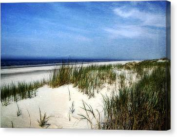 Dunes  Canvas Print by Annie Snel