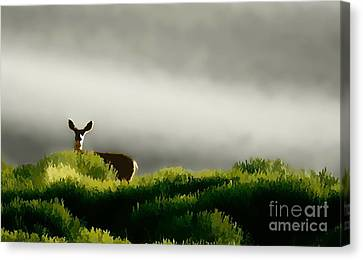 Dunes Deer P Canvas Print