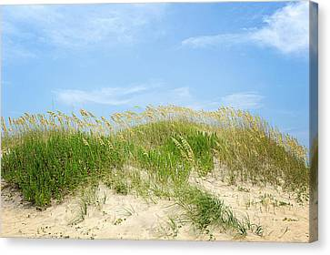 Dunes In Rodanthe Canvas Print