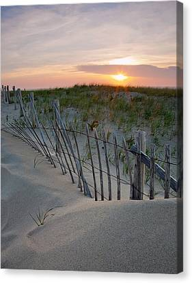 Dunes Of Cape Cod Canvas Print
