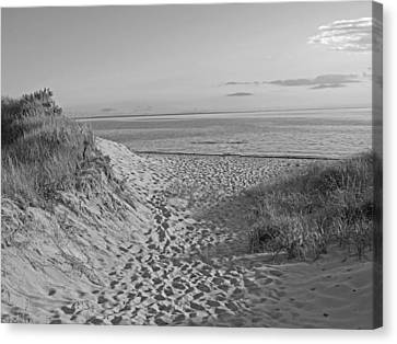 Rose Cottage Gallery Canvas Print - Dunes Walk by Barbara McDevitt