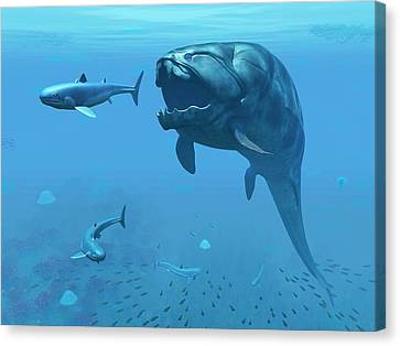 Dunkleosteus Hunting Primitive Sharks Canvas Print by Walter Myers