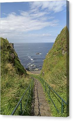 Dunluce Staircase Ireland Canvas Print by Betsy Knapp