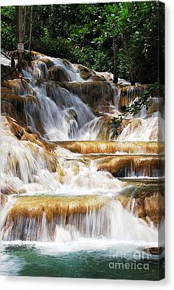 Dunn Falls Canvas Print by Hannes Cmarits