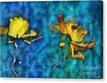 Duo Daisies - 01c2t5dp01e Canvas Print by Variance Collections