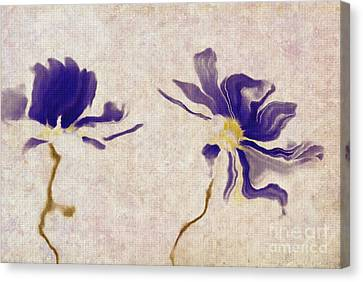 Duo Daisies - A01v03t01b Canvas Print by Variance Collections