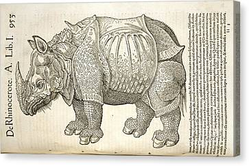 Durer's Rhinoceros, 16th Century Canvas Print