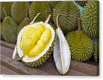 Durian 2 Canvas Print
