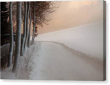 Dusk At The Edge Of The Forest Canvas Print by Dorit Fuhg